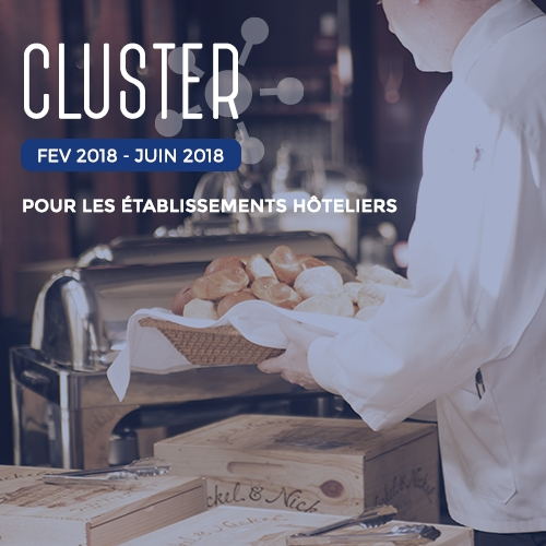 cluster-ads-hotellerie