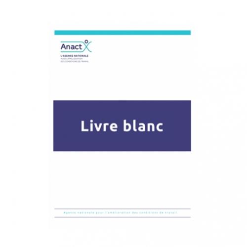 livre blanc, résultats, recommandations, anact, réseau, anact-aract, manager, travail