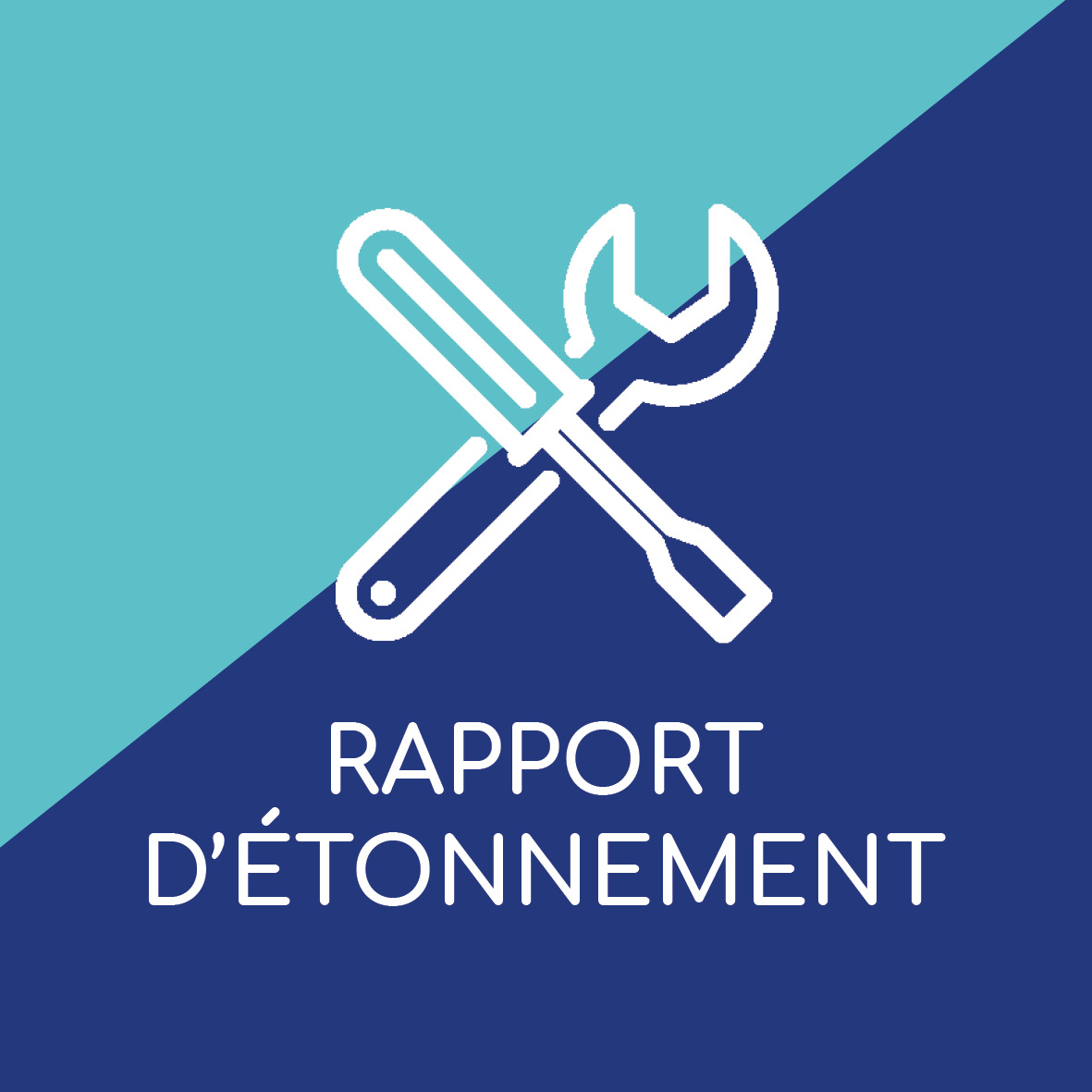 vignette_rapport